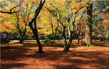1124_kanazawa_25354_edited1